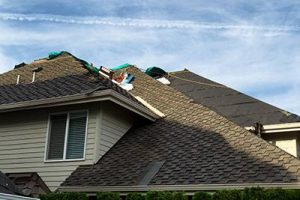 The Basics of a New or Replacement Roof in Denver Team Construction Roofing Denver